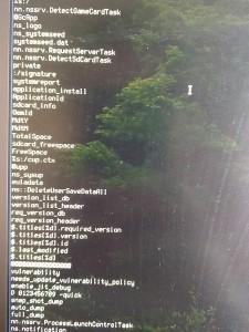 nintendo switch module exploit