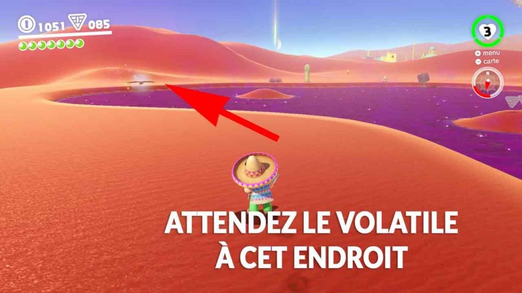 guide-lune-22-volatile-en-vadrouille-sur-le-marais-mario-01