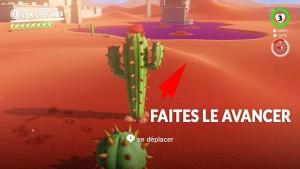 guide-lune-40-pays-des-sables-marche-du-cactus-03