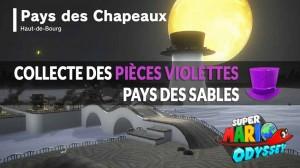 guide-piece-violettes-mario-odyssey-pays-des-chapeaux