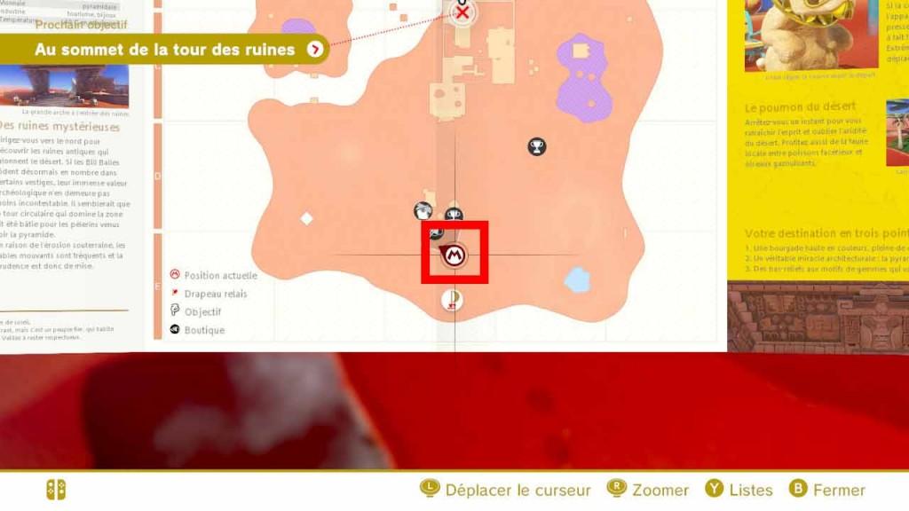 pieces-violettes-guide-pays-des-sables-mario-odyssey-01