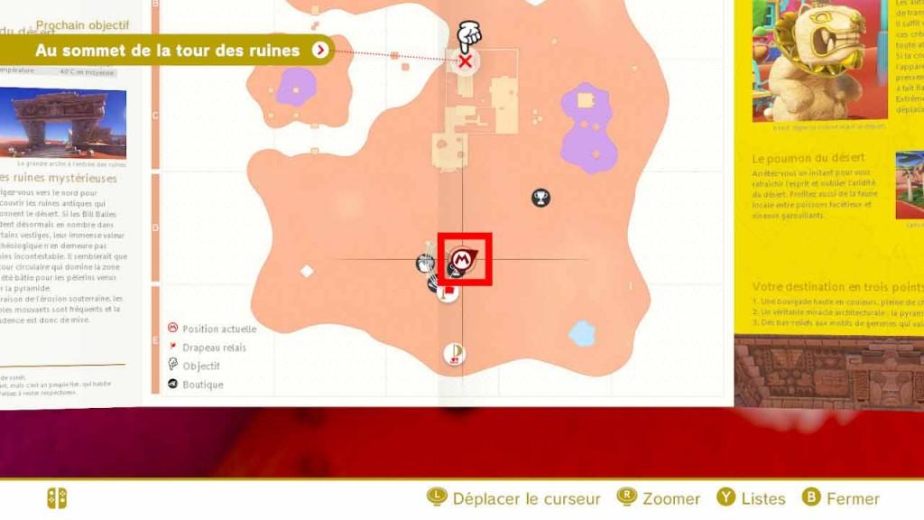 pieces-violettes-guide-pays-des-sables-mario-odyssey-05