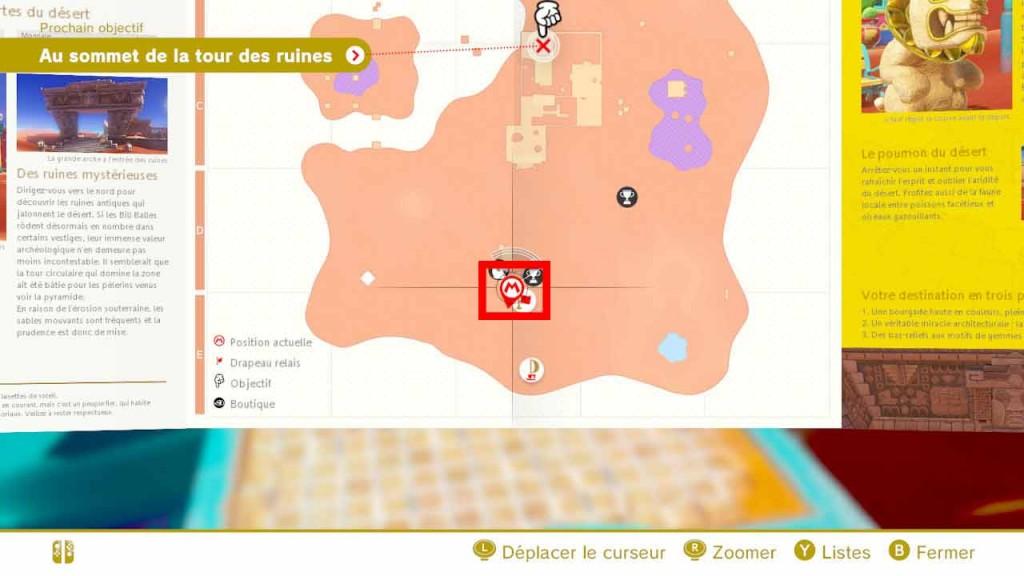pieces-violettes-guide-pays-des-sables-mario-odyssey-07