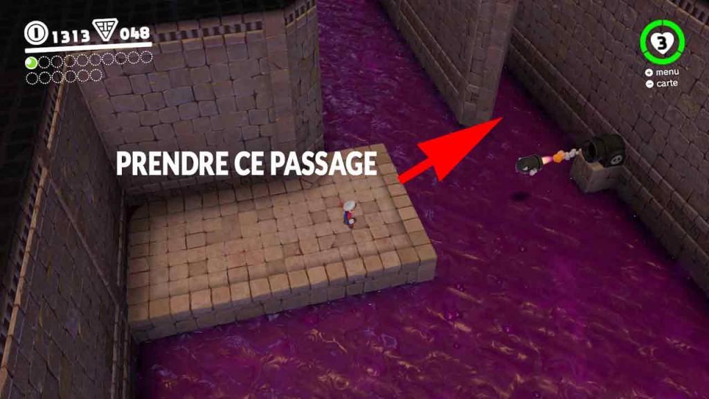 pieces-violettes-guide-pays-des-sables-mario-odyssey-34