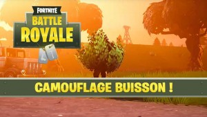 camouflage-buisson-fortnite-battle-royale