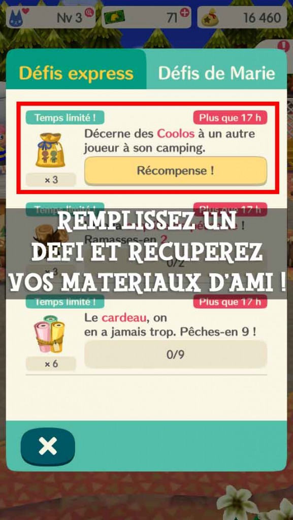 defi-materiaux-ami-pocket-camp-02