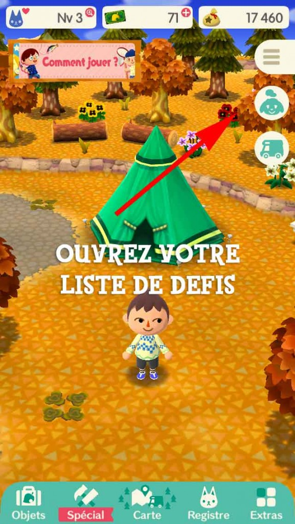 defi-materiaux-ami-pocket-camp