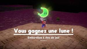 lune-pays-des-sables-59-embardees-a-dos-de-jaxi-00