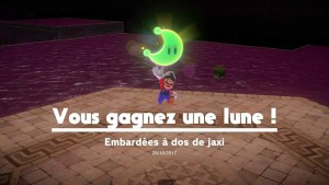 lune-pays-des-sables-59-embardees-a-dos-de-jaxi-03