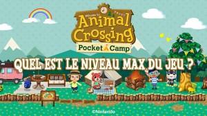 quel-niveau-max-animal-crossing-pocket-camp