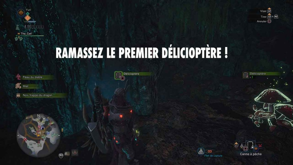 argent-facile-delicioptere-monster-hunter-world