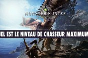 monster-hunter-world-niveau-de-chasseur-max