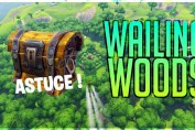 guide-defi-coffres-wailing-woods-fortnite-saison-3