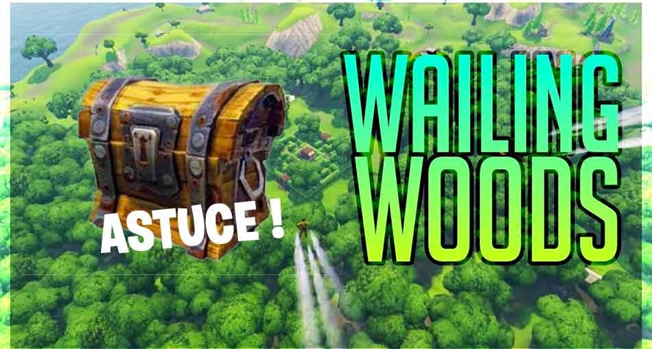 guide-defi-coffres-wailing-woods-fortnite-saison-3