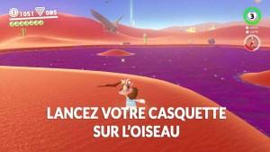 guide-lune-22-volatile-en-vadrouille-sur-le-marais-mario-02