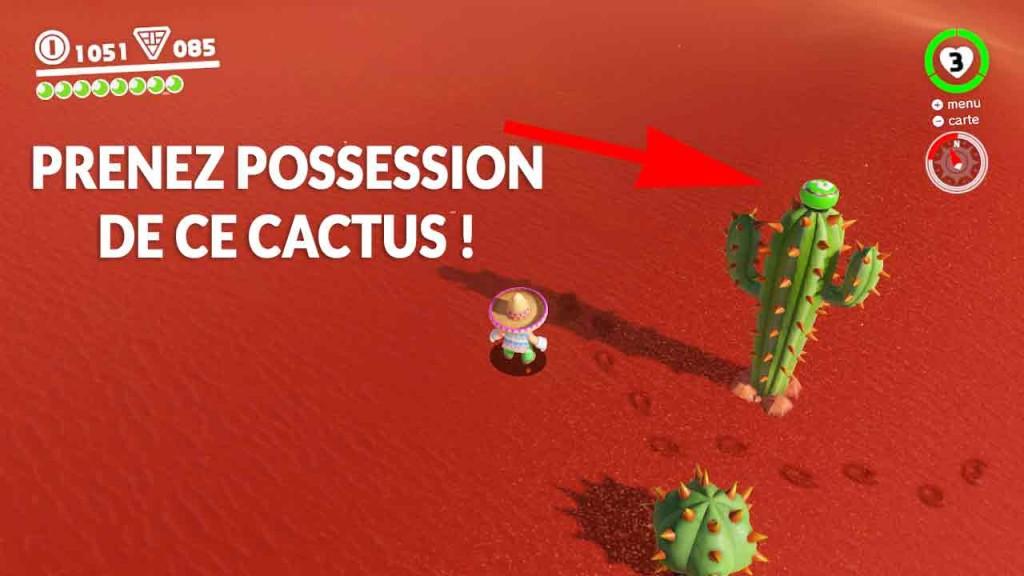 guide-lune-40-pays-des-sables-marche-du-cactus-02