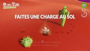 guide-lune-40-pays-des-sables-marche-du-cactus-04