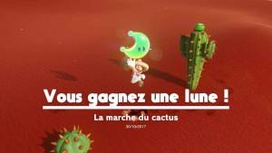 guide-lune-40-pays-des-sables-marche-du-cactus-05
