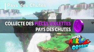 guide-piece-violettes-Pays-Chutes-mario-odyssey