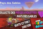 guide-pieces-voilettes-pays-des-sables-mario-odyssey-100sur100