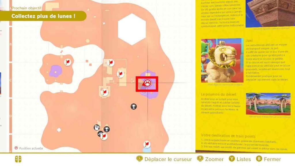 pieces-violettes-guide-pays-des-sables-mario-odyssey-51