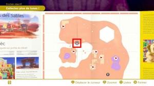 pieces-violettes-guide-pays-des-sables-mario-odyssey-60