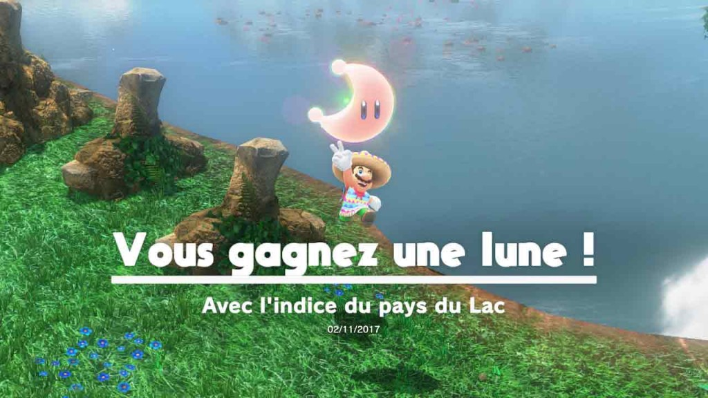guide-lune-27-pays-du-lac-mario-odyssey-06