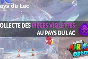 guide-piece-violettes-mario-odyssey-pays-du-lac-01