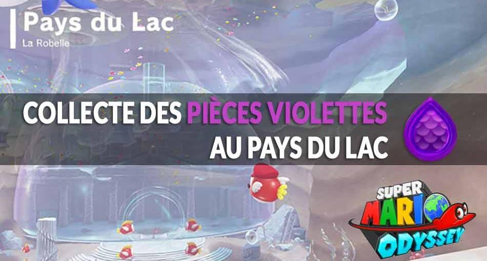 guide-piece-violettes-mario-odyssey-pays-du-lac-01