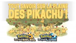 guide-plaine-des-pikachu-pokemon-ultra-soleil-lune
