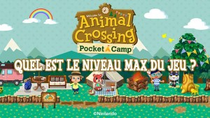 quel-niveau-max-animal-crossing-pocket-camp