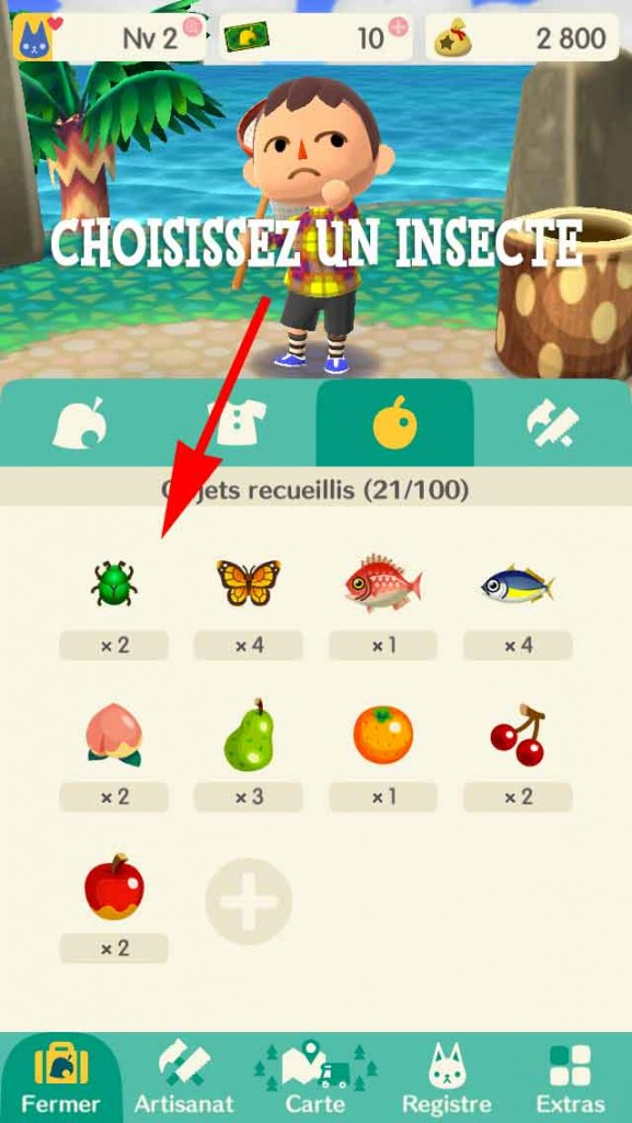vendre-insecte-animal-crossing-pocket-camp-01