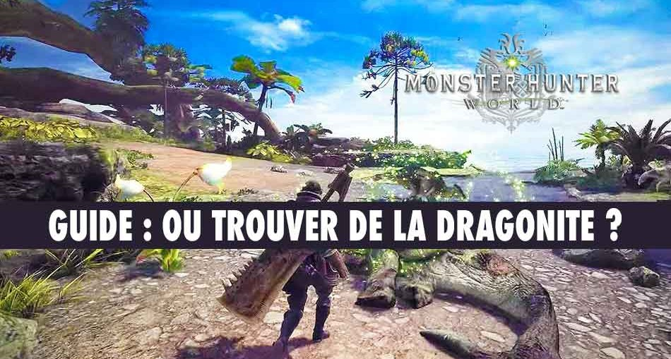 obtenir-de-la-dragonite-monster-hunter-world