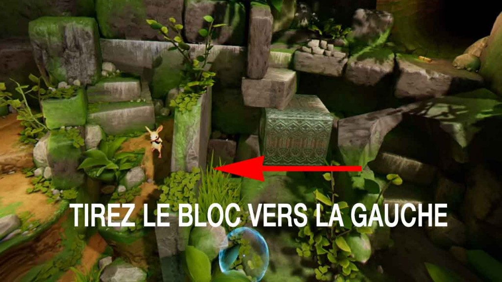 solution-moss-clairiere-01