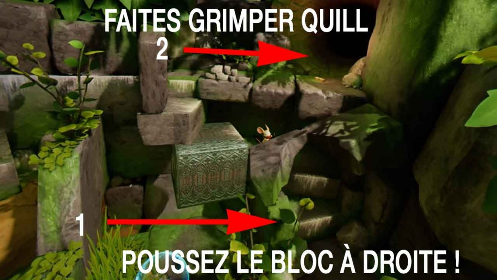solution-moss-clairiere-03