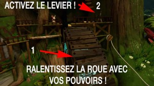 solution-moss-clairiere-06