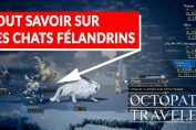 chat-felandrin-rare-octopath-traveler