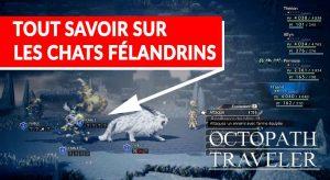 chat-felandrin-rare-octopath-traveler