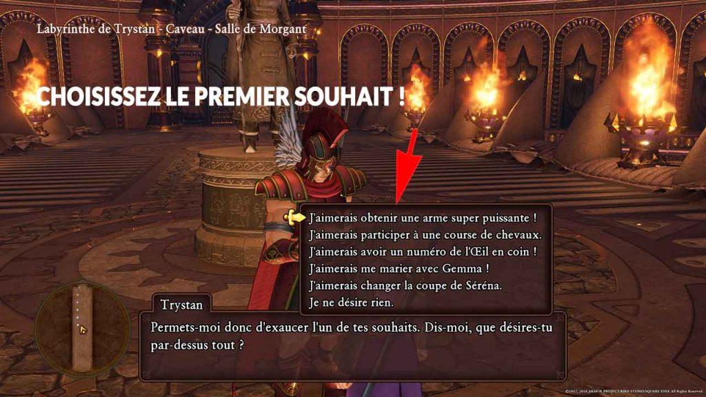 dragon-quest-11-ouhait-trystan-arme-super-puissante