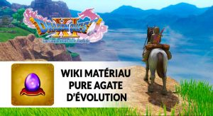 dragon-quest-11-pure-agate-evolution