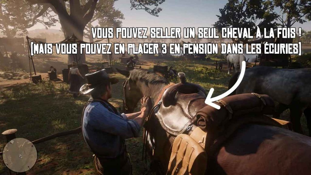 guide-avoir-un-chaval-red-dead-redemption-2