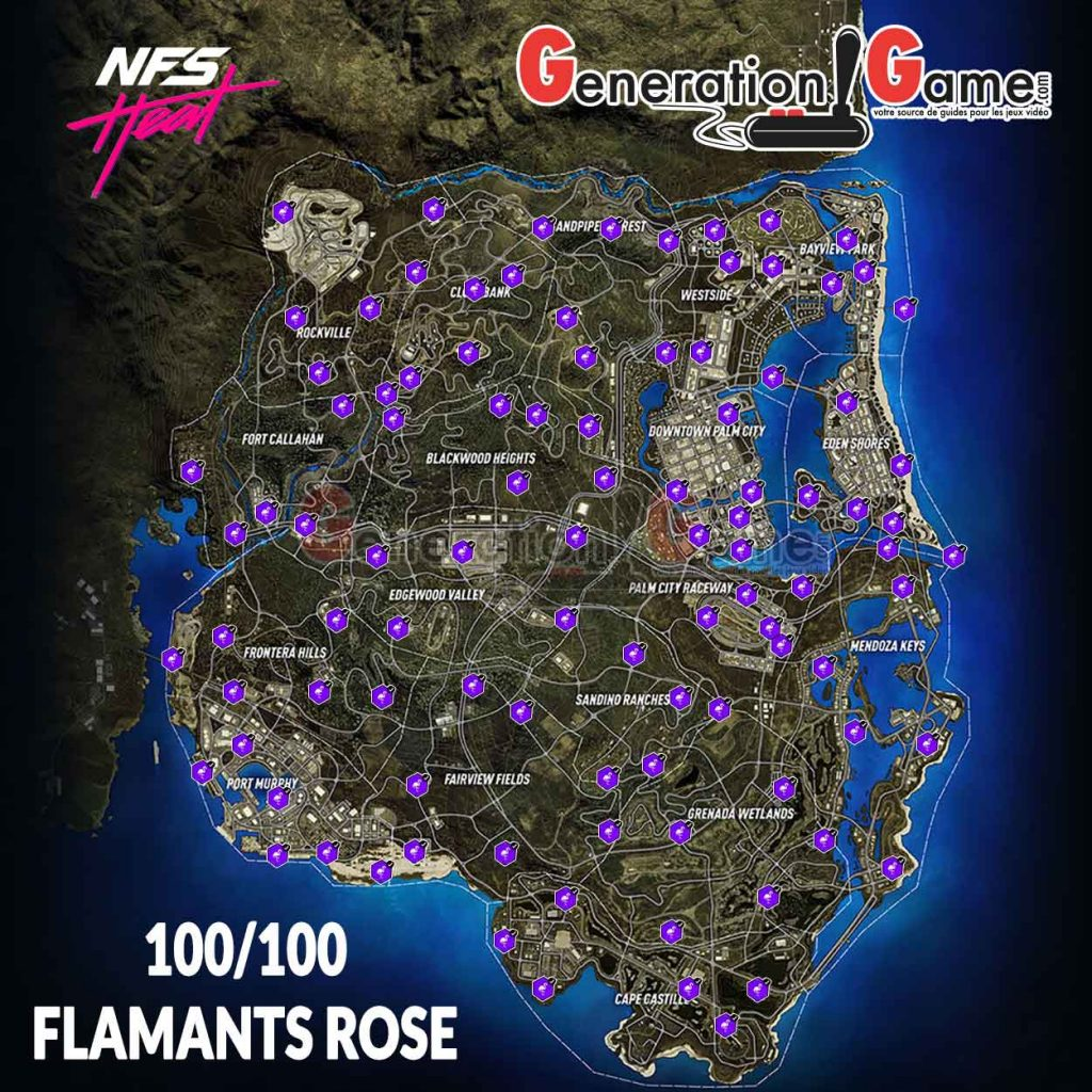 carte-map-complete-flamants-roses-en-neon-need-for-speed-heat