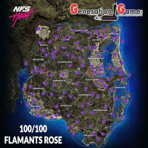 carte-map-complete-flamants-roses-en-neon-need-for-speed-heat