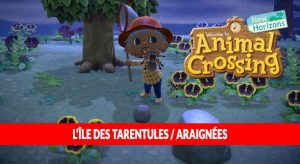 animal-crossing-new-horizons-ile-tarentule-araignee-tuto