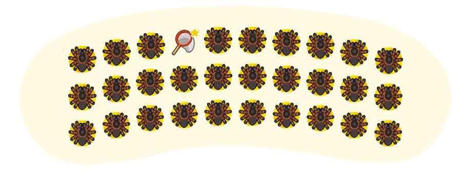 animal-crossing-new-horizons-inventaire-tarentules