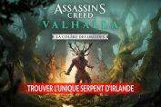 AC-Valhalla-DLC-colere-des-druides-trouver-unique-serpent-d-irlande