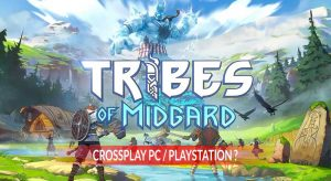 fonction-crossplay-Tribes-of-Midgard-question