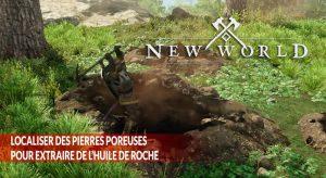 new-world-guide-ressource-pierres-poreuses-huile-de-roche
